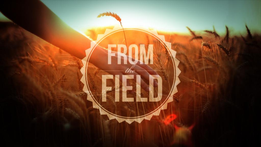 FromTheField - Slide - Title